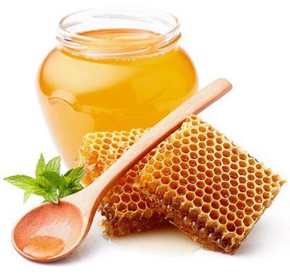 Giới thiệu về mật ong Phúc Khang